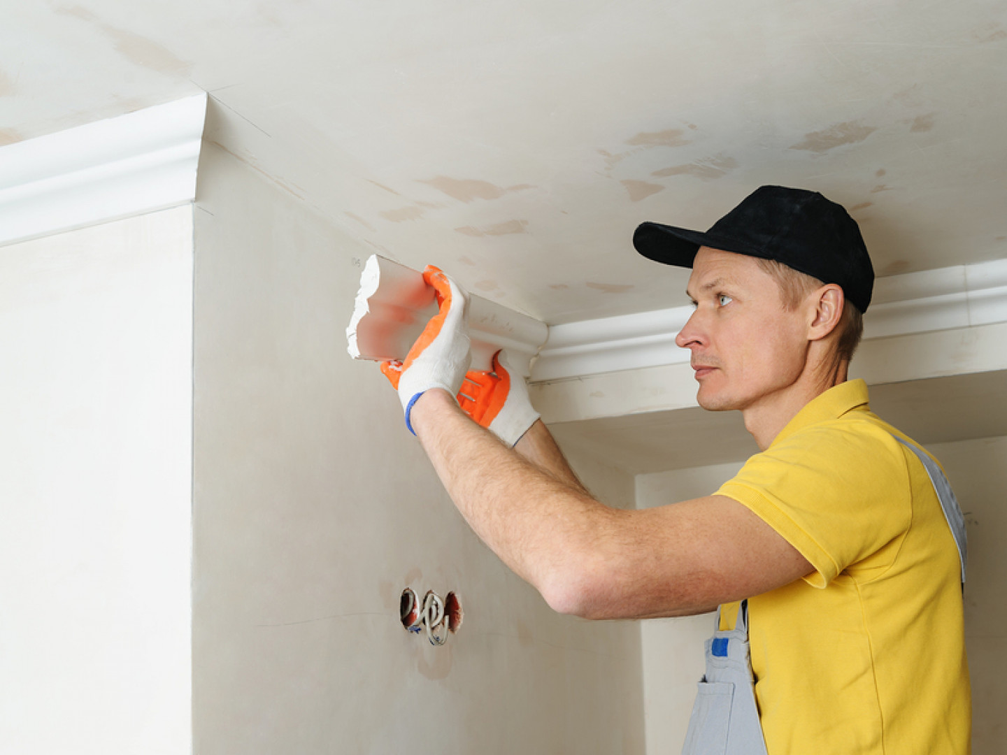 Banish Mold From Your Home or Commercial Building
